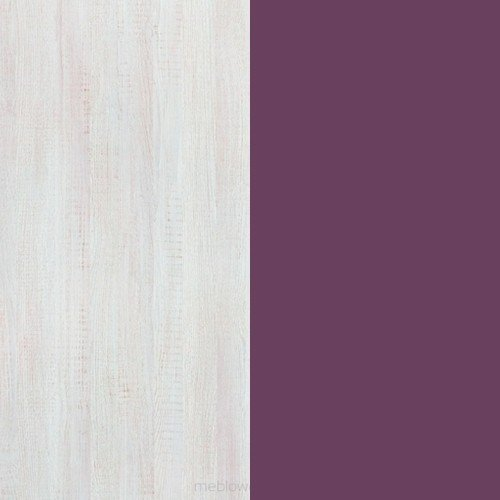 Sosna bielona / viola
